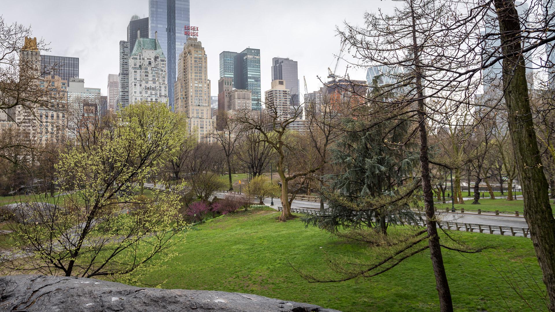 Blick auf die Häuserfront vom Central Park im Süden