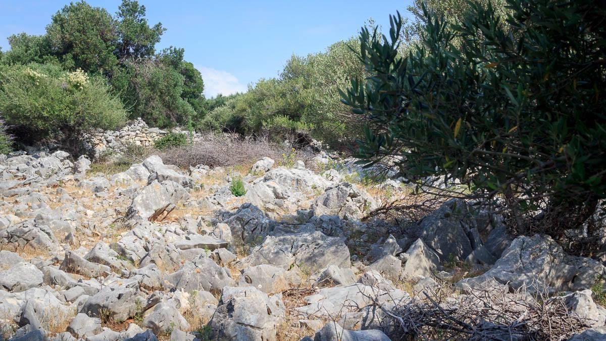 Die Gärten aus Stein