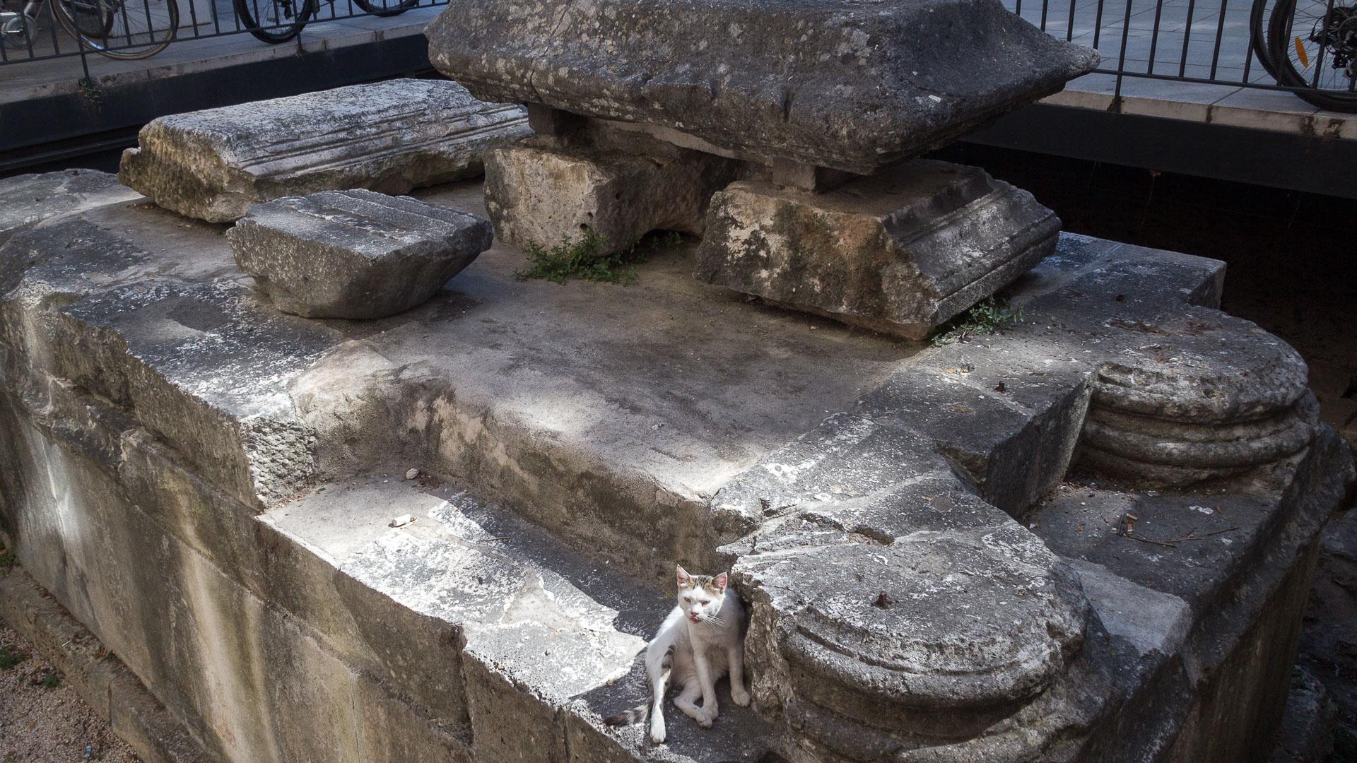Ausgrabungen in Zadar