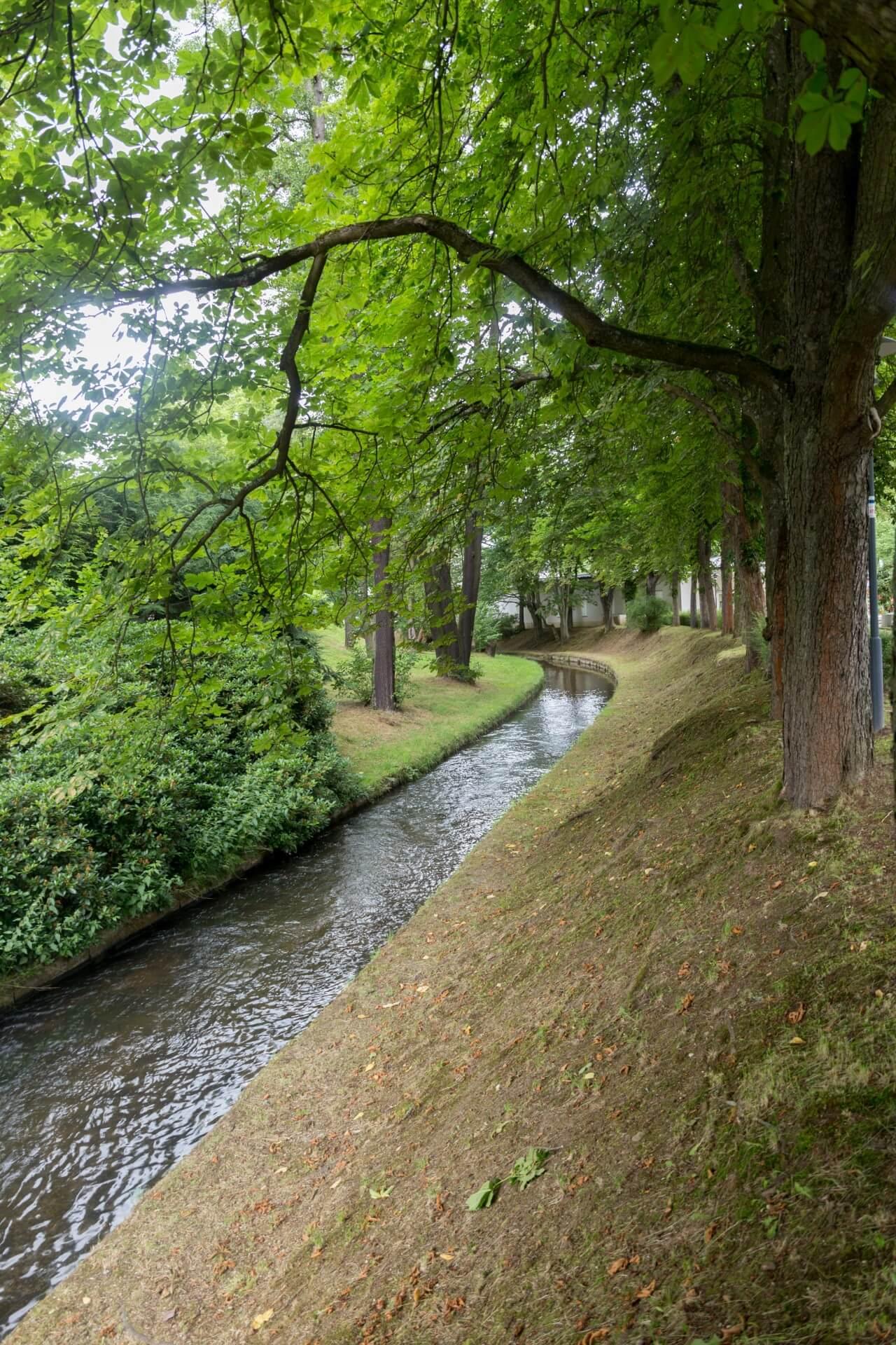 Lauf der Weißen Elster in Bad Elster