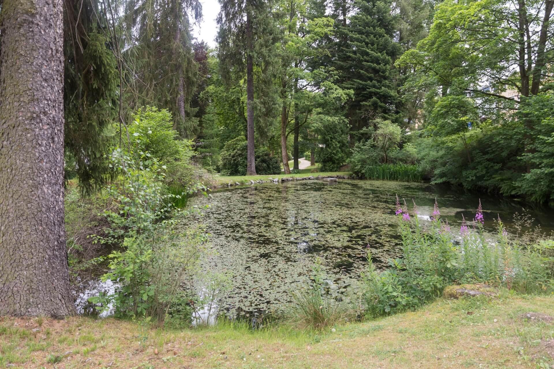 König-Albert-Park in Bad Elster