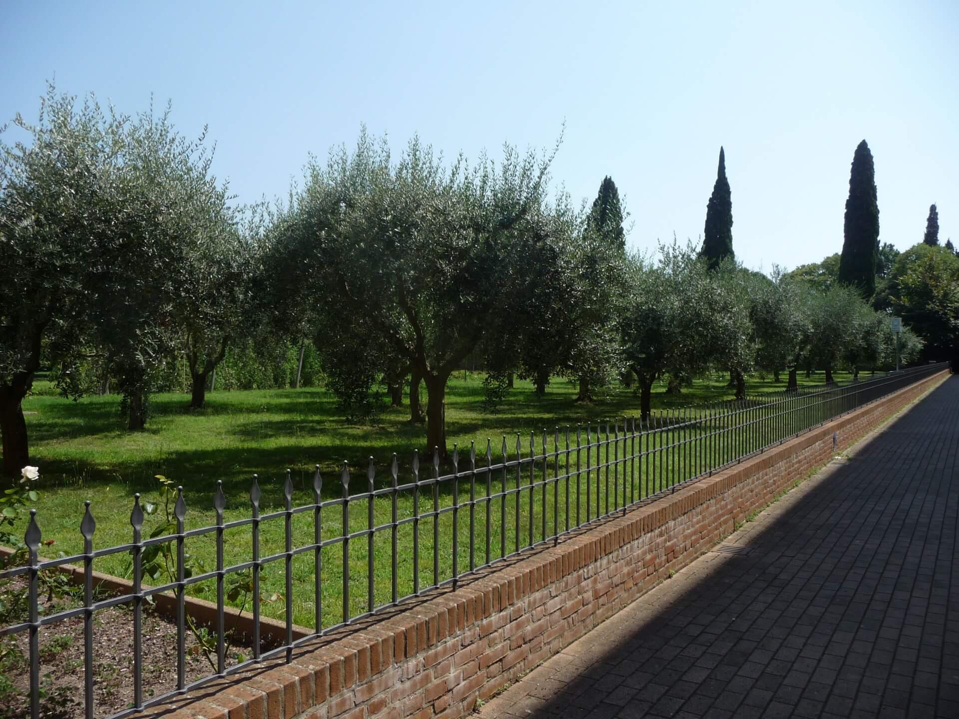 Im Klostergarten von Santissimo Redentore