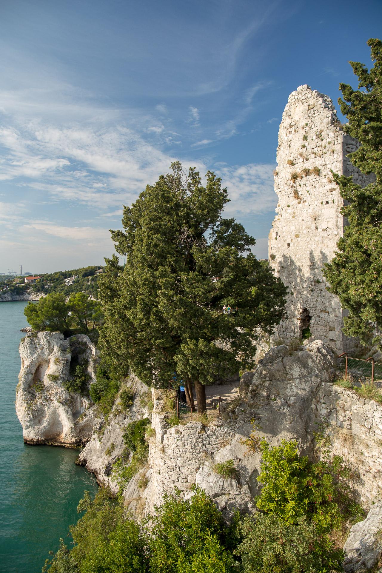 Blick von der Ruine