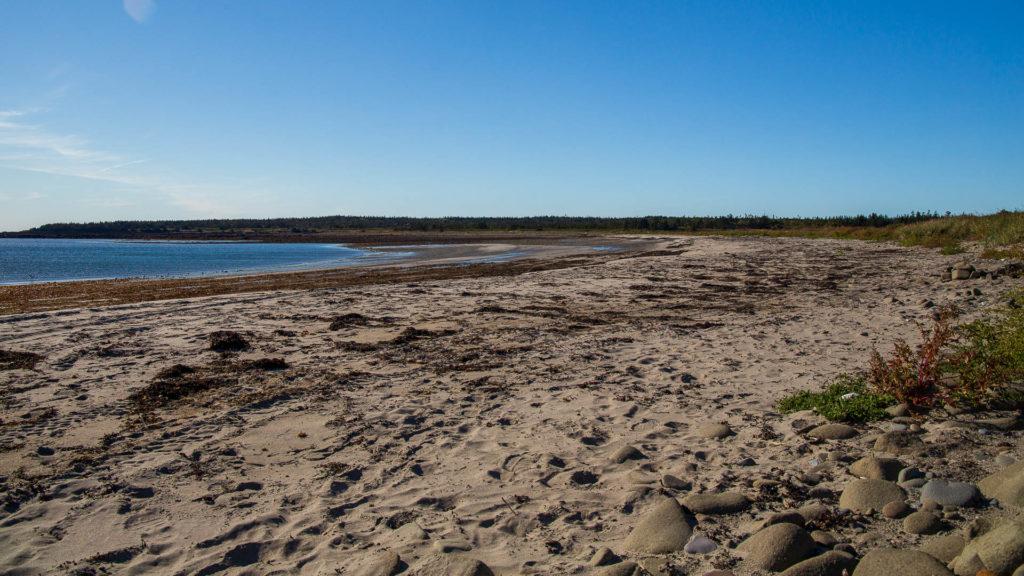 Pond Cove Beach